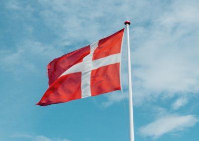 Případová studie 1: Dánský model flexicurity